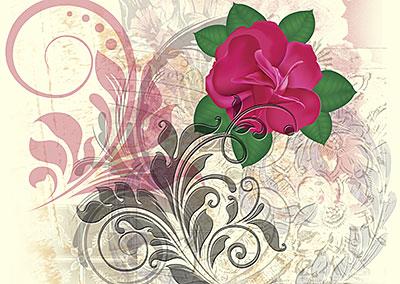 Minirose Flourish
